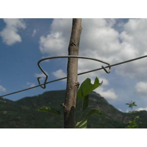 Baum-fix 1
