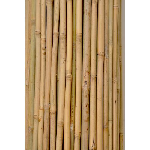 Bambusová tyč pro opěru stromků