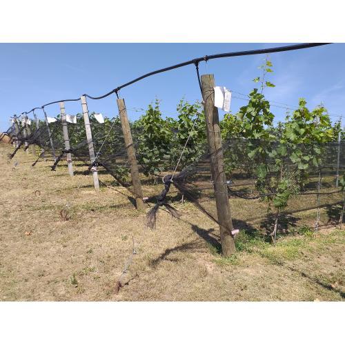 Protikroupová síť na drobné ovoce, černá 1,8 m prodej na běžné metry