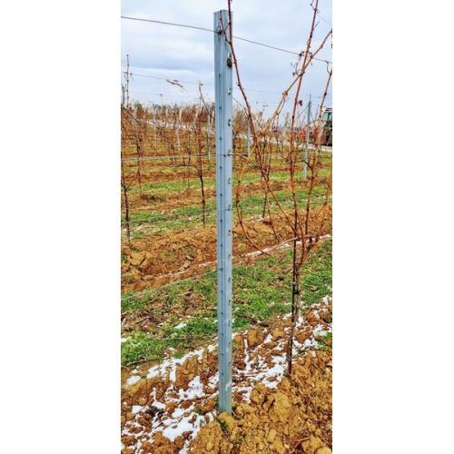 Vinařský sloupek NS řadový, délka 2,5m